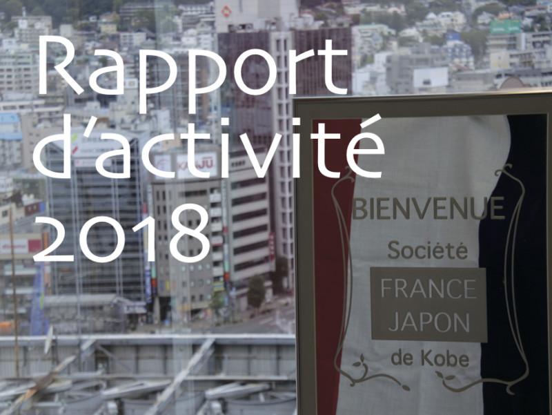 2018年度 活動レポート Rapport d'activité 2018